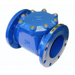 ZSW - Cast Iron Strainer